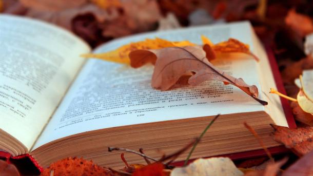 fallbooks